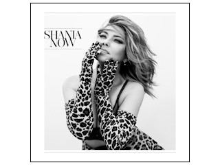 "Recenzja CD Shania Twain ""Now""."